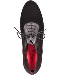 Pas De Rouge - D331 Oxford Black Multi Suede - Lyst