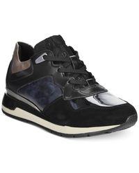 Geox | Black D Shahira Suede Sneakers | Lyst