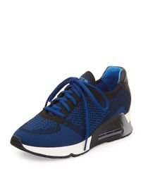 Ash - Blue Lucky Knit Lace-up Sneaker - Lyst