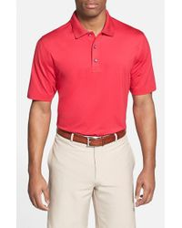 Cutter & Buck | Pink 'echelon' Drytec Polo for Men | Lyst