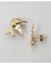 Joanna Laura Constantine | Metallic Gold Hummingbird Stud Earrings | Lyst