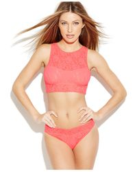Hanky Panky | Orange Signature Lace Lined Crop Top 484702 | Lyst