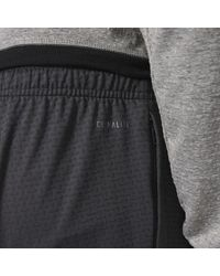 Adidas - Gray Extreme Workout Pants for Men - Lyst