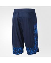 Adidas - Blue Essentials Print Shorts for Men - Lyst