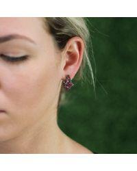 Arunashi - Pink Sapphire And Rhodolite Garnet Earrings - Lyst