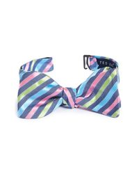 Ted Baker | Blue Stripe Silk Bow Tie for Men | Lyst