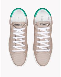 DSquared² | Gray Tennis Club Sneakers for Men | Lyst