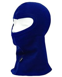 Helly Hansen - Blue Workwear Roskilde Hhwarm Balaclava for Men - Lyst