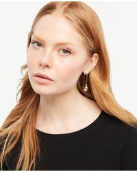 Ann Taylor   Metallic Pearlized Flower Earrings   Lyst