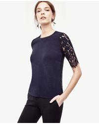 Ann Taylor   Blue Petite Lace Back Top   Lyst