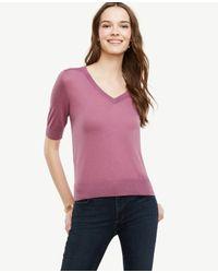 Ann Taylor | Purple Extrafine Merino Wool Short Sleeve V-neck Sweater | Lyst