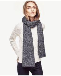 Ann Taylor | Blue Sequin Knit Scarf | Lyst