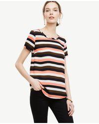 Ann Taylor | Black Petite Stripe Piped Tee | Lyst
