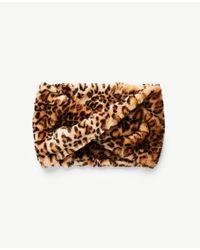 Ann Taylor - Black Cheetah Faux Fur Snood - Lyst