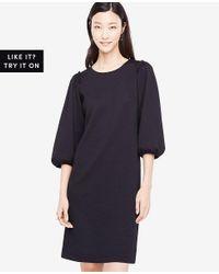 Ann Taylor - Black Puff Sleeve Knit Dress - Lyst