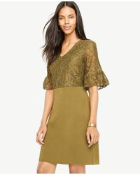 Ann Taylor - Multicolor Petite Lace Ruffle Cuff Sweater Dress - Lyst