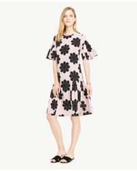 Ann Taylor Multicolor Tall Flower Power Shift Dress