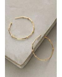 Anthropologie   Metallic Bamboo Rhinestone Hoop Earrings   Lyst