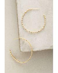 Anthropologie | Metallic Marelle Hoop Earrings | Lyst