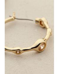 Anthropologie - Metallic Deliah Hoop Earrings - Lyst