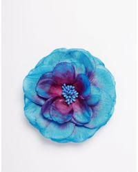 ASOS - Blue Tropical Flower Hair & Brooch Clip - Lyst