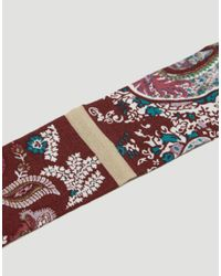 ASOS - Multicolor Wide Bandana Print Choker - Lyst