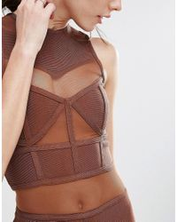 True Decadence - Brown Bandage Midi Dress With Mesh Inserts - Lyst