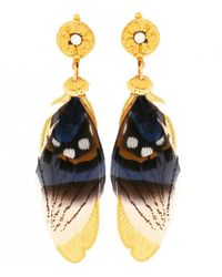 Gas Bijoux - Blue Sao Feather Drop Earrings - Lyst