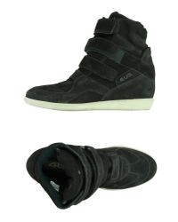Cesare Paciotti - Gray High-tops & Trainers - Lyst