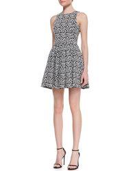 Tibi | Black Leopardprint Fitflare Knit Dress | Lyst