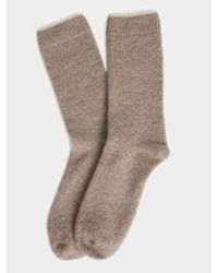 White + Warren - Brown Womens Cashmere Tipped Socks - Lyst