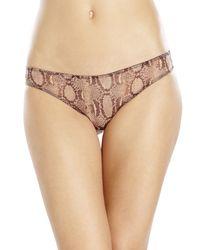 Stella McCartney - Purple Florence Fluttering Printed Bikini Panty - Lyst