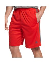 Adidas Originals | Red Men's Climalite Essential Shorts for Men | Lyst