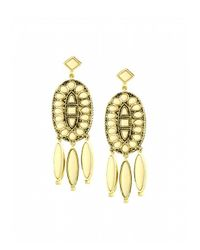 House of Harlow 1960 - Metallic Howl Feather Earrings - Lyst