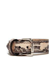 Proenza Schouler - Multicolor Ps11 Single Bracelet - Lyst