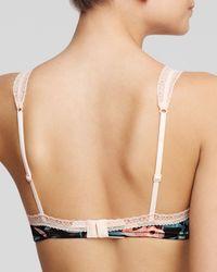 Calvin Klein | Pink Bralette - Desire Tiger Lily Retro Triangle #qf1152 | Lyst