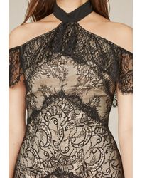 Bebe - Black Kendall Lace Dress - Lyst