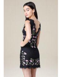 Bebe - Blue Lindsey Embroidered Dress - Lyst