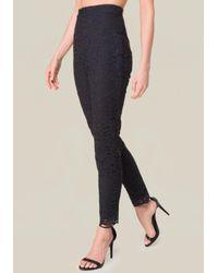 Bebe - Black 2-tone Floral Lace Pants - Lyst