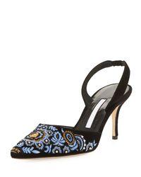 Manolo Blahnik - Black Carolyne Embroidered Suede Mid-heel Slingback Pump - Lyst
