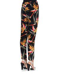 Fendi - Multicolor Bird Of Paradise-print Silk Cady Pants - Lyst