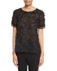 Prabal Gurung | Black Short-sleeve Feather-lace Top | Lyst