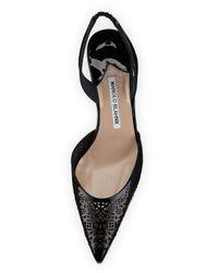 Manolo Blahnik - Black Carolyne Laser-cut Low-heel Halter Pump - Lyst