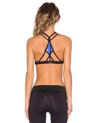 Koral Activewear - Blue Kindai Specter Sports Bra - Lyst