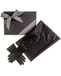 Black.co.uk - Black Cashmere And Silk Swarovski Crystal Wrap And Leather Gloves Gift Set - Lyst