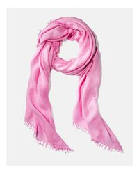 Fraas - Pink Lightweight Solid Scarf - Lyst