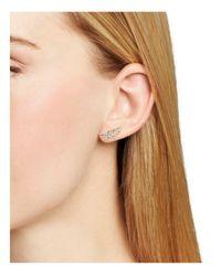 Nadri - Multicolor Pavé Feather Stud Earrings - Lyst