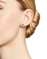 Shebee - Metallic 14k Yellow Gold Ombré Sapphire Spiral Stud Earrings - Lyst