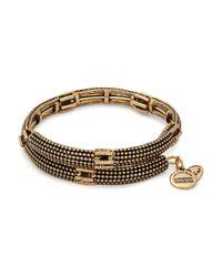 ALEX AND ANI Metallic Nova Wrap Bracelet