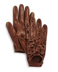 Portolano - Brown Embroidered Leather Driver Gloves - Lyst